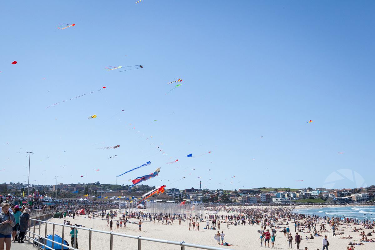 sally_crane_travel_photographer_bondi_beach_kites.jpg