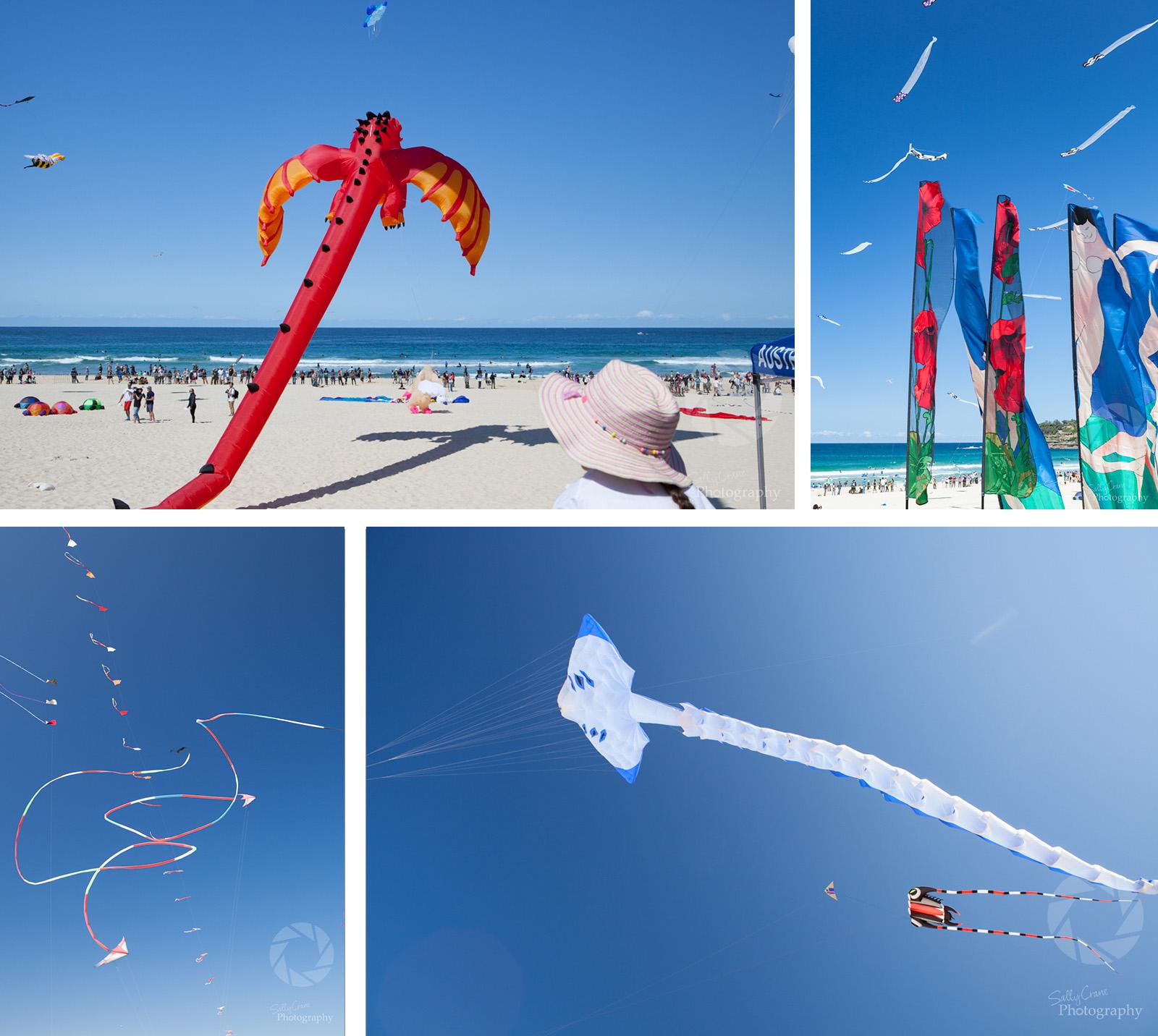 sally_crane_travel_photographer_bondi_kites.jpg